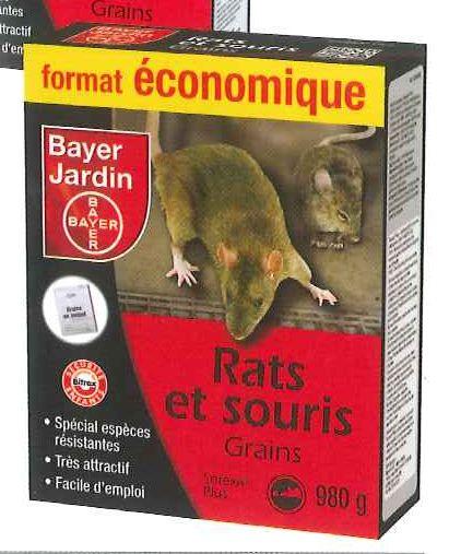 rats et souris grains. Black Bedroom Furniture Sets. Home Design Ideas